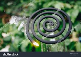 Spiral Mosquito Repellent Coil Fire Nature Stock Photo Edit Now 637131451