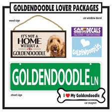 Imagine This Goldendoodle Gift Package Petco