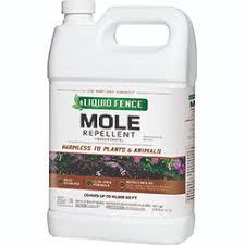 Mole Repellent Concentrate2 Liquid Fence