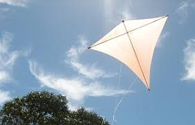 a homemade kite is fun to fly if you