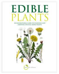 edible forest garden plant list