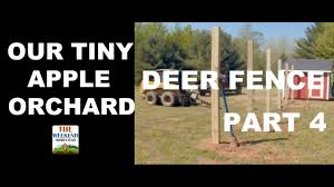 Our Tiny Orchard Series Part 4 Installing Deer Fencing Youtube