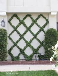 How To Make A Diamond Pattern Espalier Creating A Belgian Fence