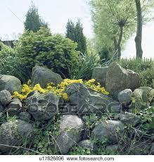 large rocks in country rockery garden