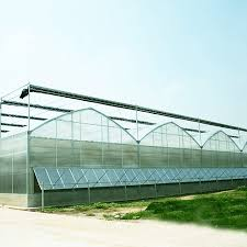 8mm twin wall polycarbonate greenhouse