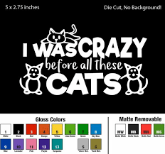 I Was Crazy Before All These Cats Decal Window Sticker Tumbler Car Cat Lover Ebay