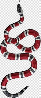 gucci fashion t shirt snake iphone