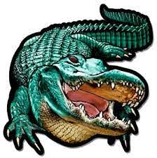 Amazon Com Gt Graphics Alligator Gator Jaws Vinyl Sticker Waterproof Decal Sports Outdoors
