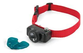 Invisible Pet Fence Collars A Underground Pet Fencing Inc Illinois Dog Fence Dealer Store