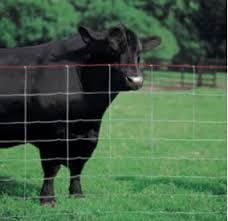 Sheep Goat Fencing 48 X 30 Mts Wire Shop Uk