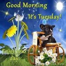 tuesday quotes good morning it s tuesday enjoy your day god