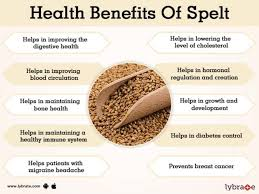 benefits of spelt and its side effects