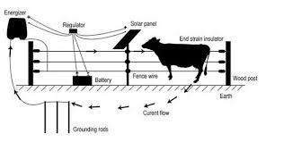 Solar Powered Controller Energizer Livestock Electric Fence Pig Build In Controller Solar Fence View Pig Build In Controller Electric Fence Solar Power Solar