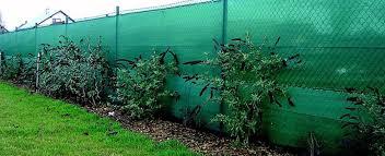 storage info shade vegetable garden plants