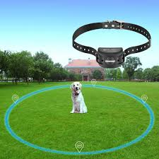 Amazon Com Covono Wireless Electric Dog Fence With Gps Dog Containment System Waterproof And Rechargeable Collar Shock Tone Correction For 1 Pet Pet Supplies