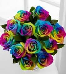 rainbow roses vase special order only