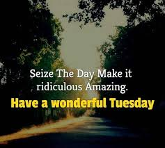 exclusive tuesday quotes for beautiful happy funny day bayart