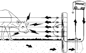 How An Electric Fence Works