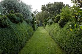 Hardscaping 101 Hedges Gardenista