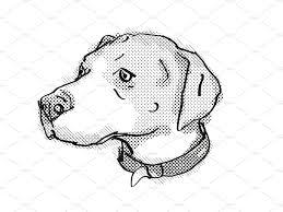 English Foxhound Dog Breed Cartoon ...