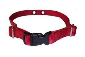Standard Strap Red Dogwatch The 1 Invisible Dog Fence Solution