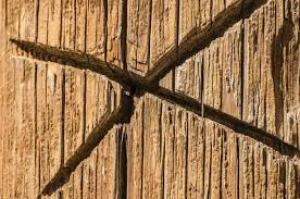 Free Images Tree Branch Fence Texture Trunk Wall Line Symbol Soil Lumber Twig Wood Post Bamboo Symbols Wood Grain Plant Stem Outdoor Structure Home Fencing X In Wood 4928x3264