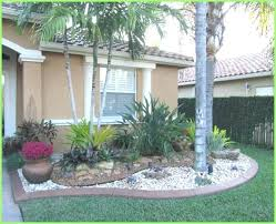 front yard design with palm trees