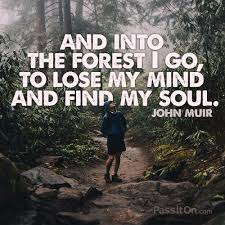 "and into the forest i go to lose my mind and my soul "" john"