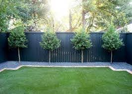 Fabulous Privacy Fence Line Landscaping Ideas Privacy Landscaping Backyard Landscaping Along Fence Fence Landscaping
