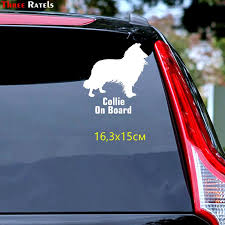 Tz 1200 17 1 15cm Border Collie On Board Car Sticker Car Stickers Auto Decals Buy At A Low Prices On Joom E Commerce Platform