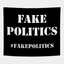 Hashtag Fake Politics - Politics - Tapestry | TeePublic