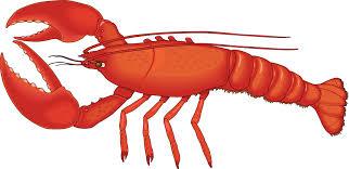 Lobster Clip Art Images