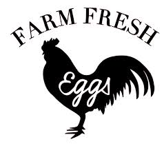 Farm Fresh Eggs Chicken Vinyl Decal For Car Home Yeti Laptop Ftw Custom Vinyl