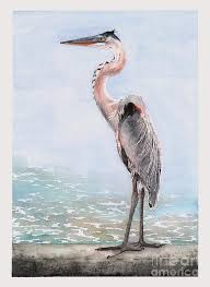 Great Blue Heron Painting by Hilda Wagner