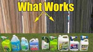 Deck And Fence Cleaners Review Mold Mildew Algae Pressure Washing Pre Wash Youtube Mold And Mildew Remover Pressure Washing Cleaner Pressure Washing