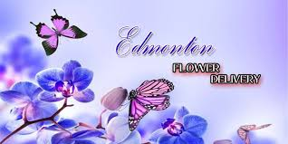 flower delivery in edmonton