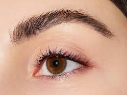 how to fake bushy brows makeup
