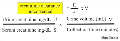 calculate gfr from creatinine clearance