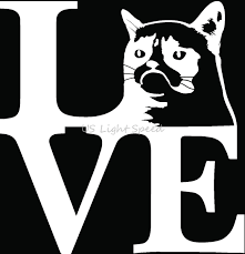 1x White Love Paw Grumpy Cat Car Window Decal Sticker Best Vinyl Die Cut 5 X5 2 Walmart Com Walmart Com