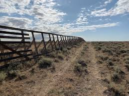 Weathered Snow Fence Wood Stolen In The Gas Hills Wyotoday Com