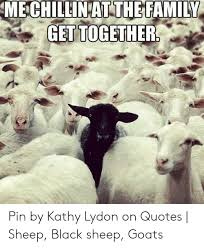 mechillin at the family get together pin by kathy lydon on quotes