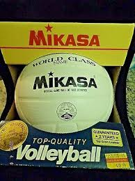 VINTAGE SIGNED Beach Volleyball USA KARCH KIRALY BRENT FROHOFF ...