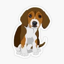 Beagle Stickers Redbubble