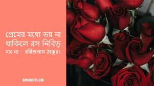 top beautiful bengali love quotes ৫০০ বাংলা