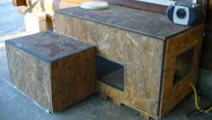 outdoor shelters for cats