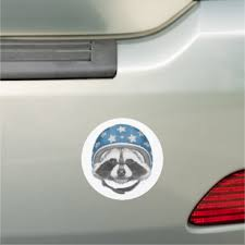 Raccoon Bumper Stickers Decals Car Magnets Zazzle
