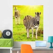 Wild Zebras African Continent Wall Decal Wallmonkeys Com