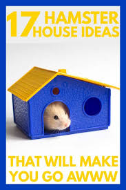 17 Hamster House Ideas That Will Make You Go Awwww Hamsters 101