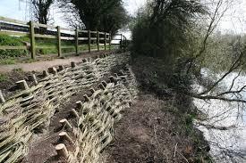 Sustrans Cycle Path Maisemore Willow Spiling Erosion Control Landscape Landscape Art