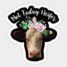 not today heifer t shirt funny farmer